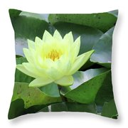 Water Lily - Burnin' Love 14 Throw Pillow