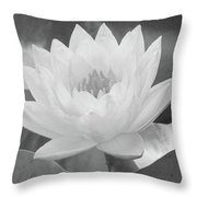 Water Lily - Burnin' Love 15 - Bw - Water Paper Throw Pillow