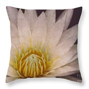 Water Lily Digital Painting Throw Pillow