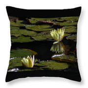 Water Lily Throw Pillow by Fabio Giannini