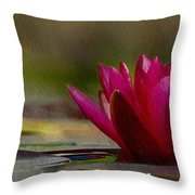 Water Lily - Id 16235-220248-4550 Throw Pillow