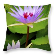 Water Lily In A Tropical Garden_4657 Throw Pillow