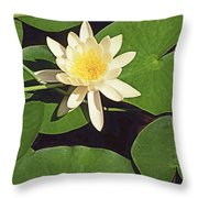 Water Lily I V Throw Pillow