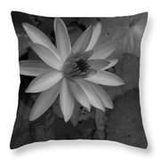 Water Lily Monochrome Throw Pillow