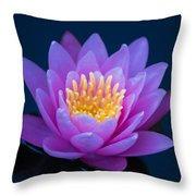 Water Lily Of The Dawn Throw Pillow