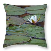 Water Lily Scene Throw Pillow