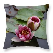 Water Lily With Bee Throw Pillow