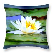 Water Lily With Blue Border - Digital Painting Throw Pillow
