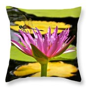 Water Lily With Dragonfly Throw Pillow