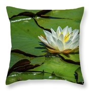 Water Lily With Friend Throw Pillow