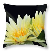 Water Lily Yellow Nymphaea Throw Pillow