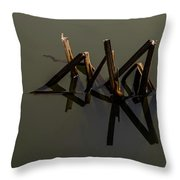 Water Lines Throw Pillow