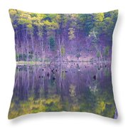 Water Logged Throw Pillow