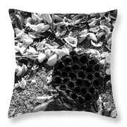 Water Lotus And Shells In Bw Throw Pillow