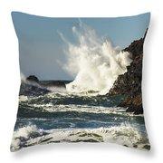 Water Meets Rock Throw Pillow