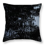 Water Mirror Throw Pillow