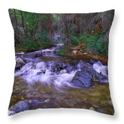 Water Never Tires Throw Pillow