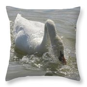 Water Off A Swan's Back Throw Pillow