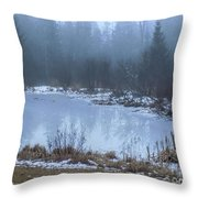 Water On Ice In Fog Throw Pillow