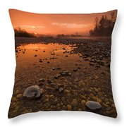 Water On Mars Throw Pillow by Davorin Mance