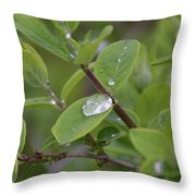 Water Or Silicone Throw Pillow