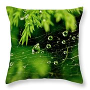 Water Orbs In Cobweb. Throw Pillow