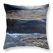 Water Ouzel, Middle Fork Kaweah River, Sequioa National Park Throw Pillow