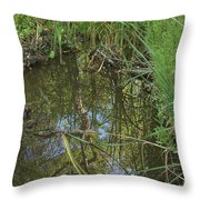 Water Pond Reflection In Peters Canyon Throw Pillow