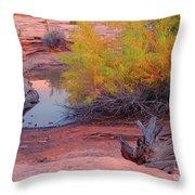 Magic Puddle At Canyon Lands Throw Pillow