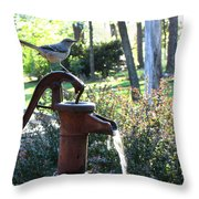 Water Pump Throw Pillow