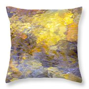 Water Reflection 1144 Throw Pillow