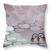 Water Reflection Of Garden Lamps At The Akshardham Temple, Jaipur  Throw Pillow