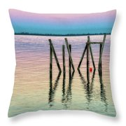 Water Reflections 2017 Throw Pillow