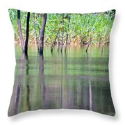 Water Reflections On Amazon River Throw Pillow