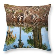Water Reflections Throw Pillow
