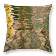Water Reflections Throw Pillow by Yali Shi