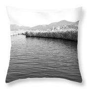 Water Scene In B And W Throw Pillow