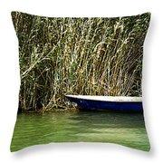 Water Scene Pano Throw Pillow
