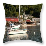 Water Song 1459 Throw Pillow