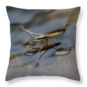 Water Strider Throw Pillow