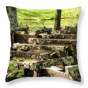 Water Trough Intersection Throw Pillow