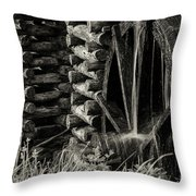 Water Wheel 3 Throw Pillow