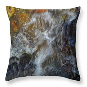 Water Whimsy 169 Throw Pillow