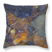 Water Whimsy 172 Throw Pillow