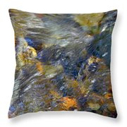 Water Whimsy 173 Throw Pillow