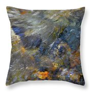 Water Whimsy 174 Throw Pillow