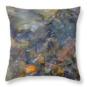 Water Whimsy 176 Throw Pillow