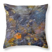 Water Whimsy 177 Throw Pillow