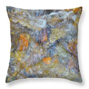 Water Whimsy 179 Throw Pillow