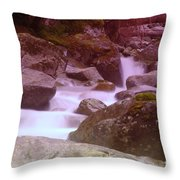 Water Winding Through Rocks Throw Pillow